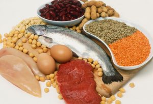 Lean-Protein