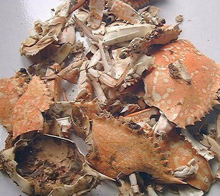 crustacean shells glucosamine
